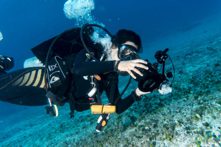 Underwater photography class
