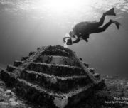 Underwater photography workshop Cozumel 2