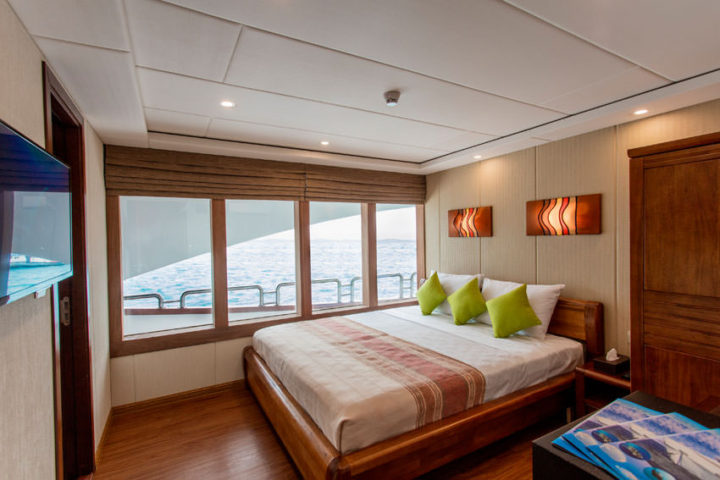 Carpe Novo liveaboard Room