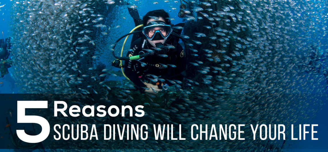 5 Reasons Scuba diving will change your life
