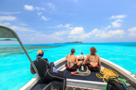 Dive trip in Palau